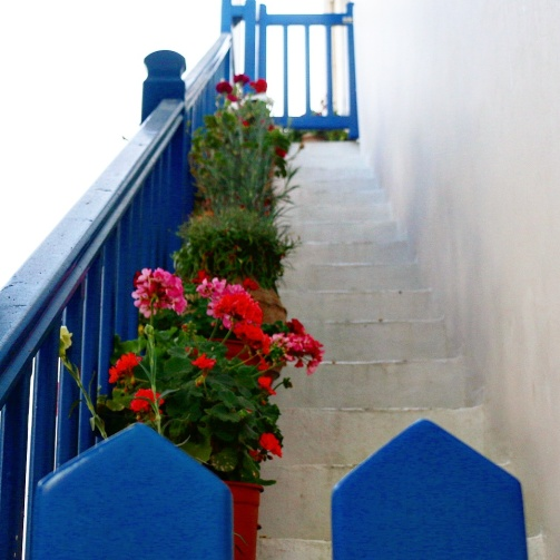 Flowers line the stairs
